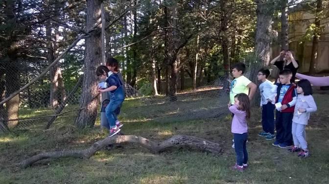 Scuola Natura, Avventura e Scienza: le attività di luglio per bambini e ragazzi