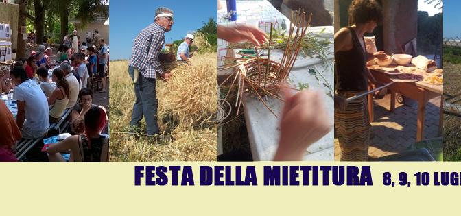 Festa della Mietitura: Una festa per riscoprire il grano e le antiche tradizioni