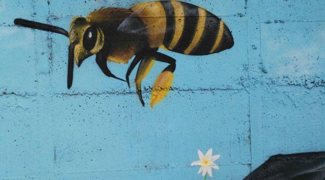 """SALVIAMO LE API DI AMATRICE – Adotta un'azienda e sostieni """"Miele per la Vita"""""""