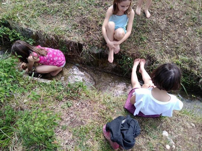 Scuola Natura 2018: due weekend residenziali di avventure nel bosco