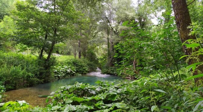Anniversario referendum 2011: continua il disastro ambientale sul Farfa, a rischio anche il Velino e Sabina ancora senz'acqua